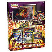 Pokemon TCG Groudon Box
