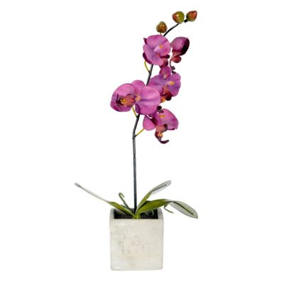 Homescapes Cerise Purple Artificial Orchid Flowers in Pot for Indoor & Outdoor Decoration
