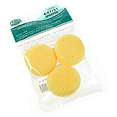 Royal Synthetic Sponge Set - Set of 3