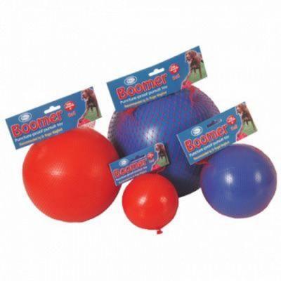 Boomer Ball 10 inch