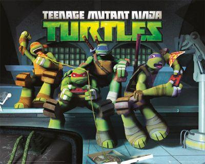 Teenage Mutant Ninja Turtles Mini Poster - 50cm