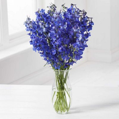 Buy simply delphinium bouquet from our thank you flowers for Flower arrangements with delphinium