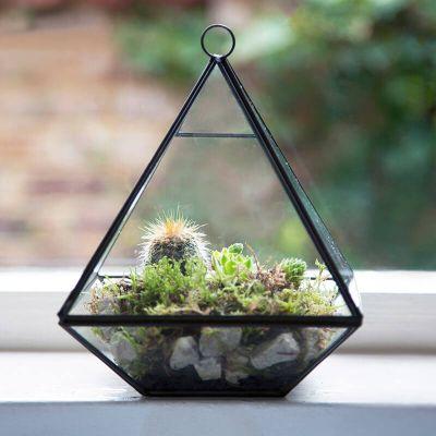 buy pyramid shape terrarium from our vases bowls range. Black Bedroom Furniture Sets. Home Design Ideas