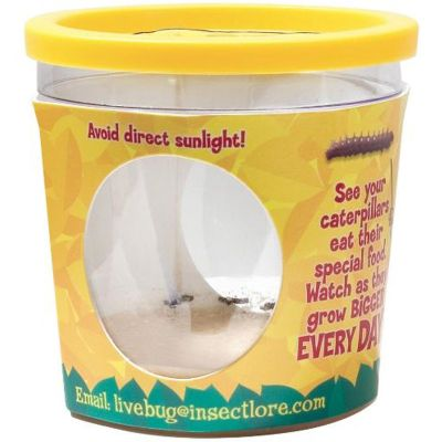 Insect Lore Caterpillar Refill Certificate (for 5 Caterpillars)