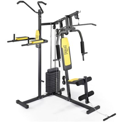 Everlast Home Gym with Pull Up and Dip Station