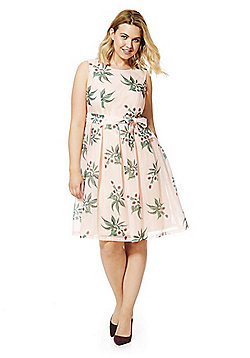 Lovedrobe Floral Striped Fit and Flare Plus Size Dress - Peach