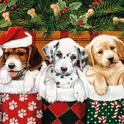 Ambiente 3 Ply Paper Lunch Napkins, Christmas Dogs