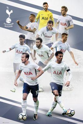 Tottenham Hotspur FC Players 17-18 Poster 61x91.5cm
