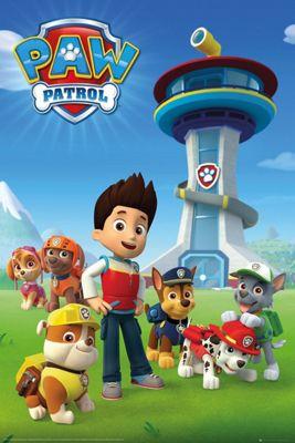 Paw Patrol Team Poster 61 x 91.5cm
