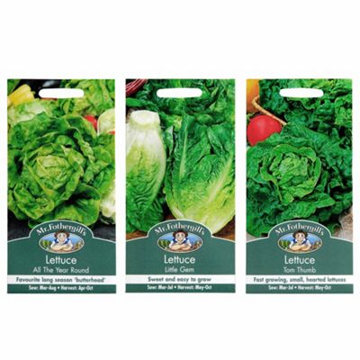 Mr Fothergill's Seeds - Grow Your Own Lettuce Collection - 3pc Multipack