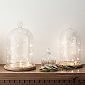 Set of 2 Glass Bell Jars with Micro LED Fairy Lights