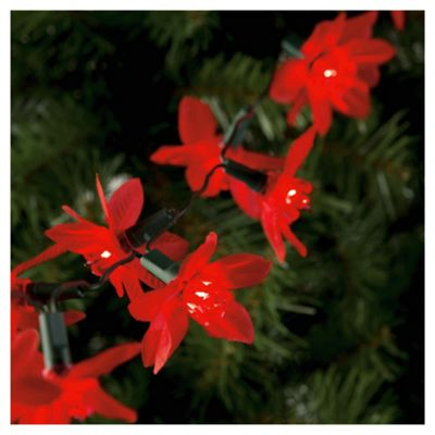 Buy Festive 20 Poinsettia Fairy Lights From Our All