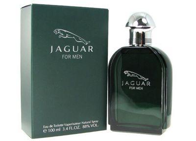 Jaguar Jaguar For Men 100ml Eau de Toilette Spray