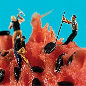 Holy Mackerel Watermelon Seeders Greetings Card