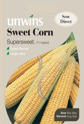 Sweet Corn Supersweet F1