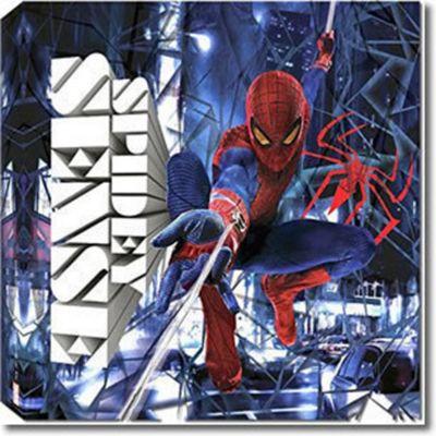 Spiderman Canvas - Spidey Sense