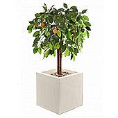 "Artificial 3ft 3"" Orange Tree"