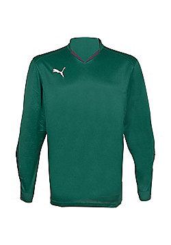 Puma V5.08 Buffon Goalkeeper Shirt - Green