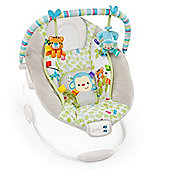 Bright Starts Comfort & Harmony Monkey Bouncer