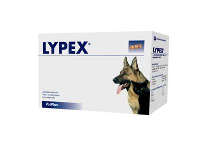 Lypex Caps Blister 60pk