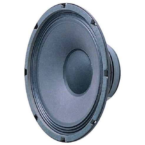 250mm (10In) 150W Power Speaker