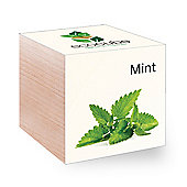 FeelGreen Grow Your Own BioDegradable EcoCube with Mint Seeds 7.5 x 7.5 x 7.5 cm